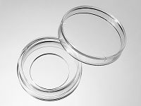 29 mm Glass Bottom Dishes