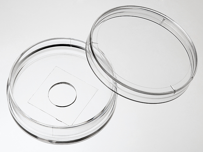 35 mm Glass bottom dish with 10 mm micro-well #0 cover glass large picture