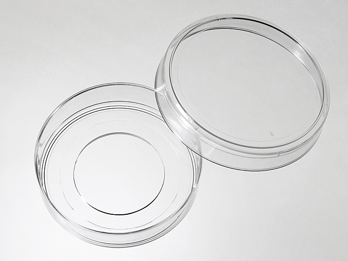 55 mm Glass bottom dishes large picture